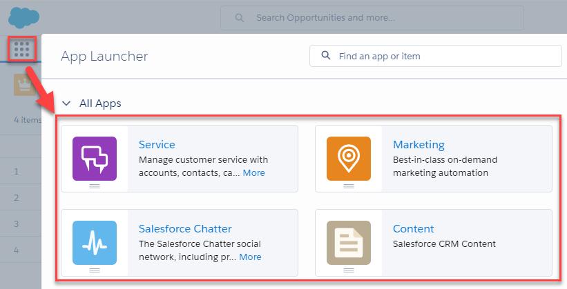 Salesforce com Basic Navigation & Data Terms